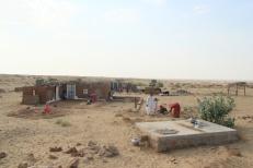 Désert du Thar Desert