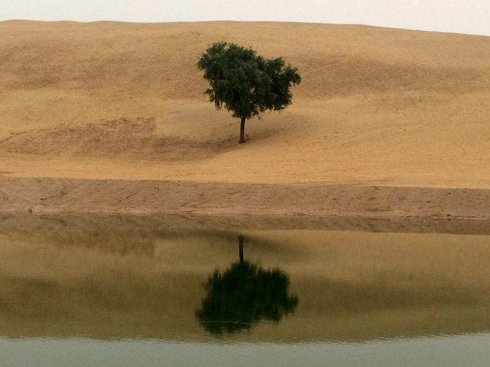 sand dunes Rajasthan